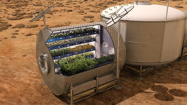 support image for Can veggies grow in space? Perhaps, with LEDs article