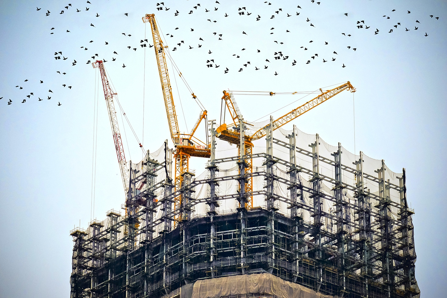 Support image for why construction projects fail article